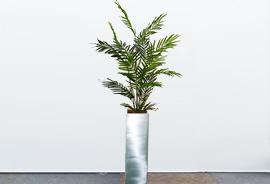 tree12_s